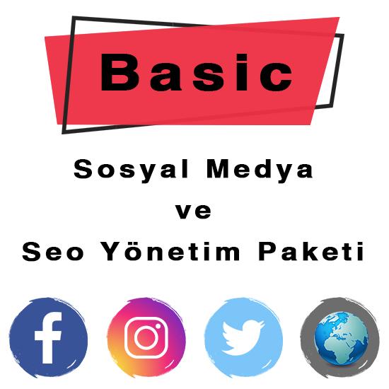 SEO BASIC (AYLIK / YILLIK)