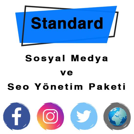 SEO STANDART (AYLIK / YILLIK)